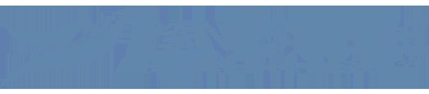 panestetic_logo